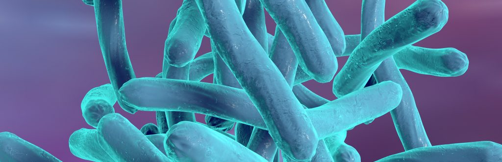 Bacteria which cause tuberculosis Mycobacterium tuberculosis, 3D illustration