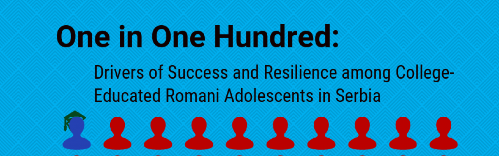 Harvard FXB Releases New Report on Roma Access to Education