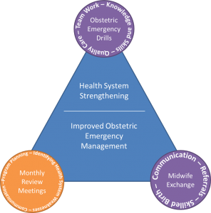 program manager health system strengthening