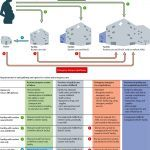 """The Lancet Maternal Health Series: """"The Scale, Scope, Coverage, and Capability of Childbirth Care"""""""