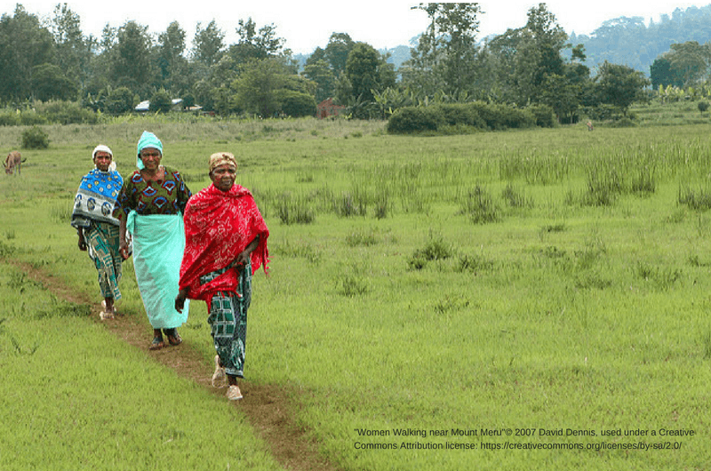 "Women Walking near Mount Meru""© 2007 David Dennis, used under a Creative Commons Attribution license: https://creativecommons.org/licenses/by-sa/2.0/"