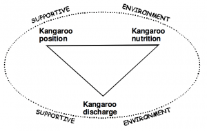 Components of KMC (Source: Healthy Newborn Network)
